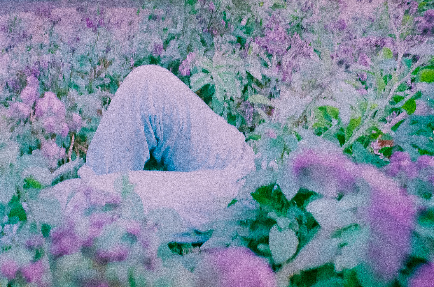 Film photo of girl in flower field